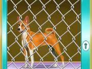 Doge Cage Escape