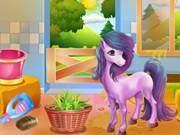 Farm Of Unicorn And Horse