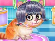 Kitty Hair Salon