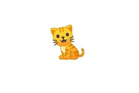 Cat Adventute