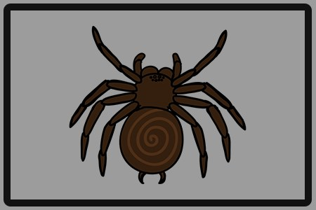 SPIDER DANGER
