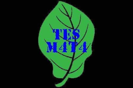 TES M4T4